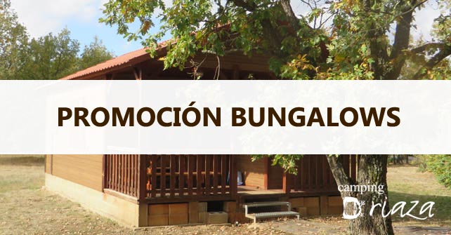 Promoción Bungalows 10º Aniversario