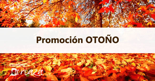 Promotion AUTUMN