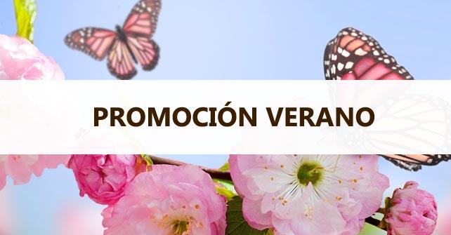 Promoción Verano